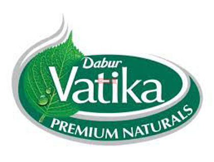 Picture for manufacturer VATIKA