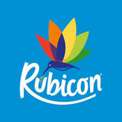 Picture for manufacturer RUBICON