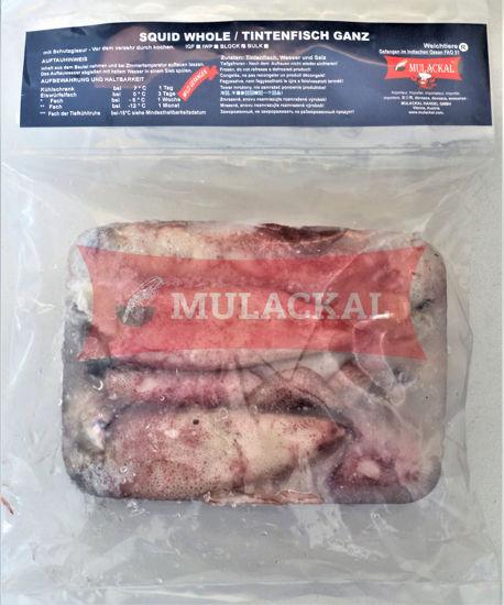 MULACKAL Squid Whole 10/20  10X1kg