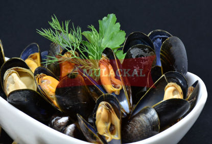 Mussel whole cooked 40/60 1kg