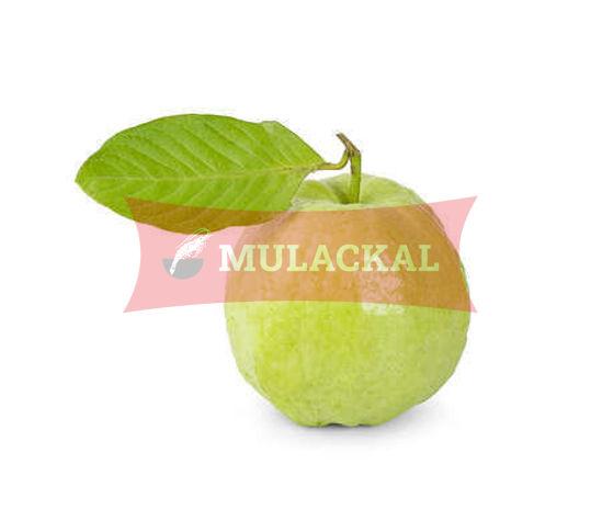Guava Fresh  15pcsx5kg